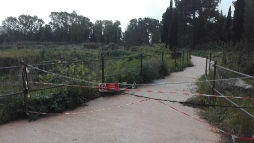 """Siracusa. """"Deprimente"""" parco archeologico della Neapolis, sopralluogo di deputati regionali: """"Autonomia subito"""""""
