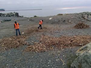 migranti puliscono le spiagge