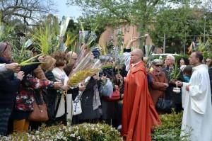 padre aurelio benedizione palme domenica palme
