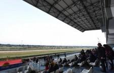 Ippica. Premio Fluorite all'Ippodromo del Mediterraneo: in pista sabato con sei corse