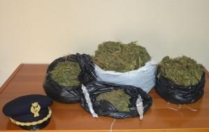Marijuana-sequestrata-a-Roccabernarda