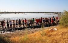 Priolo. Inanellati i 120 fenicotteri rosa nati nella riserva Saline, 80 specialisti a lavoro