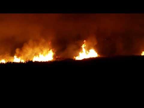 """Siracusa. Altro incendio fuori """"stagione"""", fiamme nell'area del Ciane: la vegetazione della zona in cenere"""