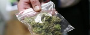 marijuana_2203534b