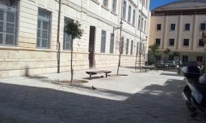 foto scuola ortigia